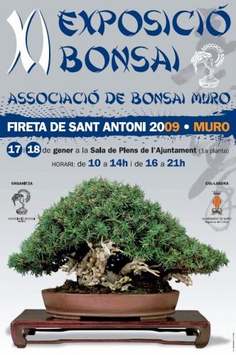Bonsai XI Exposición Bonsái Muro 2009 - Assoc. Bonsai Muro