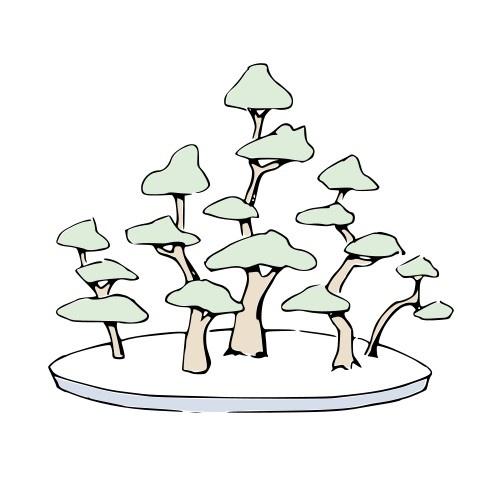 Bonsai YOSE-UE - Bosque - Ilustraciones