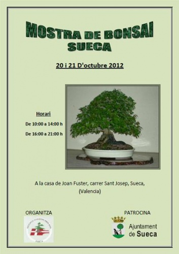 Bonsai Cartel - Sueca