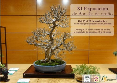 Bonsai XI Exposicion de bonsai de otoño - Cordoba - eventos