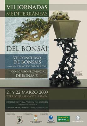 Bonsai VII Jornadas Mediterraneas Bonsai Torrevieja - torrevejense
