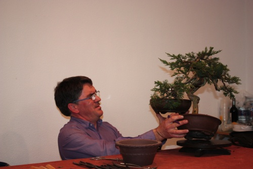 Bonsai Calculando al milimetro - Assoc. Bonsai Muro