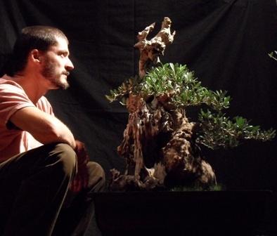 Bonsai el q mas me gusta a mi - Andres Bicocca
