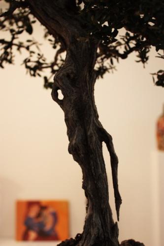 Bonsai 4910 - torrevejense