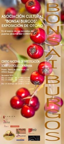 Cartel Exposición de Otoño - Asociación Cultural Bonsai Burgos
