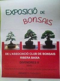 Cartel Expo en Sollana
