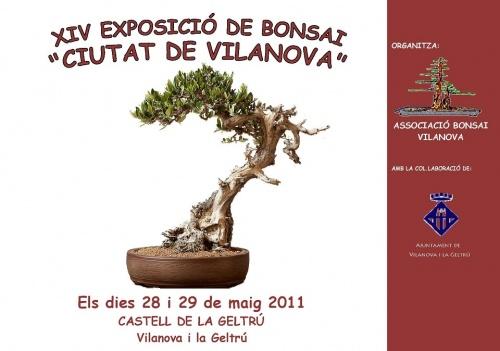 Cartel Exposicion Bonsais Vilanova
