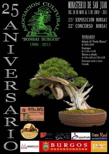 Cartel 25 Exposición Bonsái Burgos