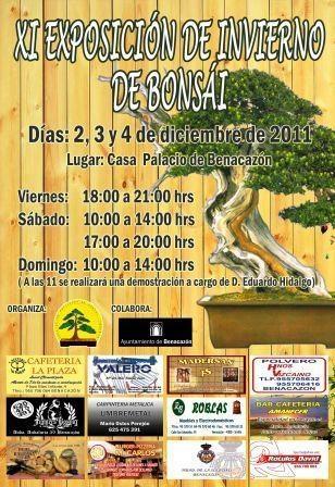 Cartel XI Exposición de bonsái de Invierno