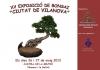 Cartel XV Exposició de Bonsai Ciutat de Vilanova