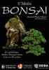 Cartel V Mostra Bonsai - Asociació Bonsai Vinaros