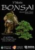 Cartel V Mostra Bonsai - Asociació Bonsai Vinaros