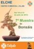 Cartel 7ª Muestra de Bonsáis - Aljub (Elche)