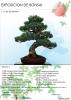 Cartel Exposición de Bonsai Puçol
