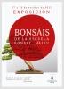 Cartel Exposición Escuela bonsáis Haiku