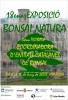 Cartel 18 Exposicion Bonsai Natura