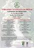 Cartel Asociacion Valenciana de Bonsai - Exposicion de Primavera