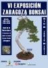 Cartel VI Exposicion Zaragoza Bonsai